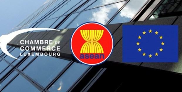Le Vietnam participe a la Journee de l'ASEAN au Luxembourg hinh anh 1