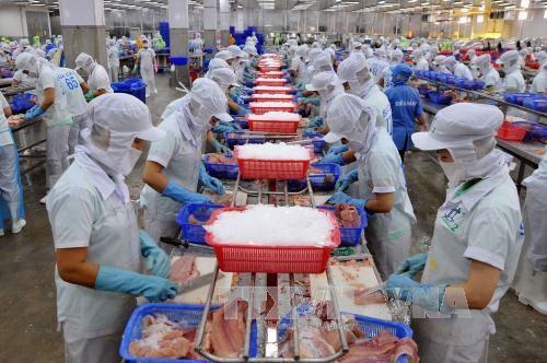 Le Vietnam et les Etats-Unis boostent leur cooperation dans l'agriculture hinh anh 1