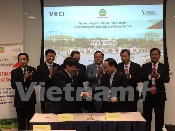 Binh Phuoc appelle l'investissement singapourien hinh anh 1