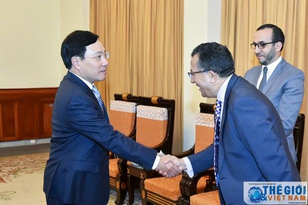 Le vice-PM et ministre des AE recoit l'ambassadeur du Maroc hinh anh 1