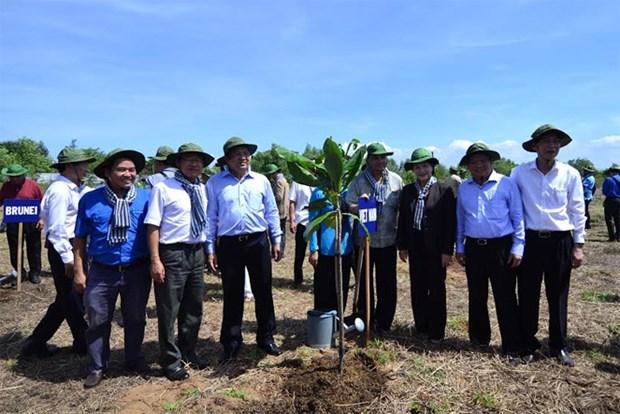 UIP : les delegues se rendent dans certaines localites vietnamiennes hinh anh 1