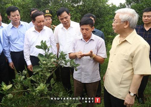 Le secretaire general du Parti travaille dans la province de Hoa Binh hinh anh 1