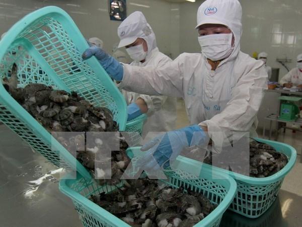 Japon, le plus grand importateur de crevettes du Vietnam hinh anh 1