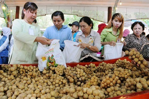 Rendez-vous au 13e Festival des fruits du Sud hinh anh 2