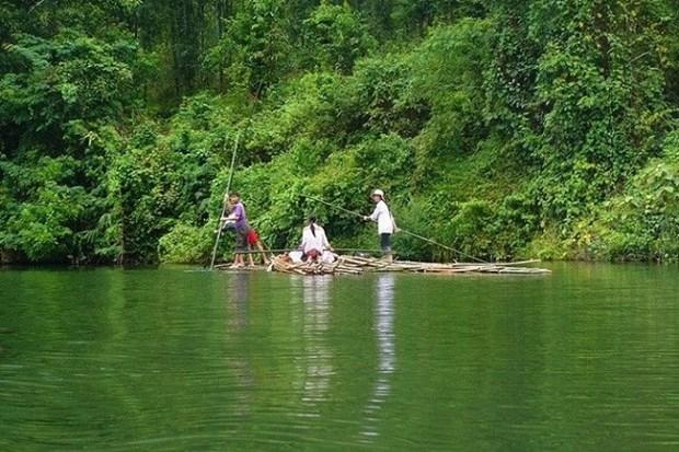 Le parc national de Pu Mat - reserve de biosphere mondiale hinh anh 1