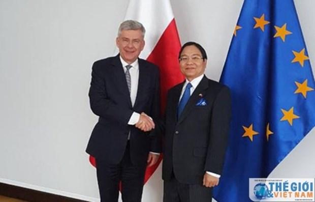 La Pologne souhaite renforcer ses relations en divers domaines avec le Vietnam hinh anh 1