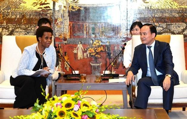 Vietnam et Afrique du Sud intensifient la cooperation decentralisee hinh anh 1