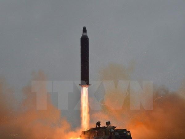 Le Vietnam demande des efforts pour maintenir la paix dans la peninsule coreenne hinh anh 1