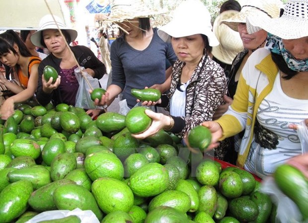 Ouverture du festival des fruits du Nam Bo 2017 hinh anh 1