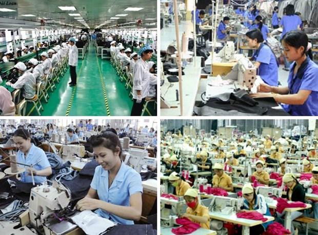 Relance du marche du travail au Vietnam hinh anh 1