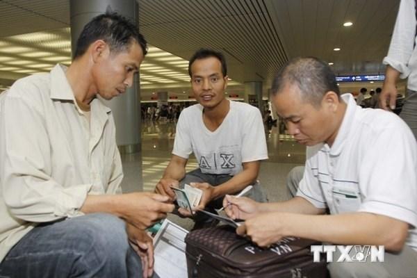 Des lignes rouges disponibles 24h/24 pour les Vietnamiens au Qatar hinh anh 1