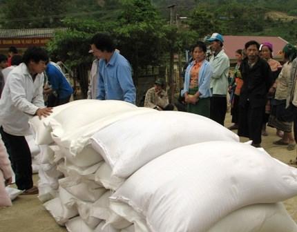 Aide en riz pour six districts pauvres de la province de Ha Giang hinh anh 1