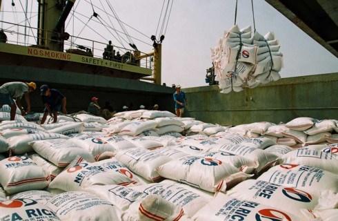 Riz : hausse record du cours a l'export depuis trois ans hinh anh 1