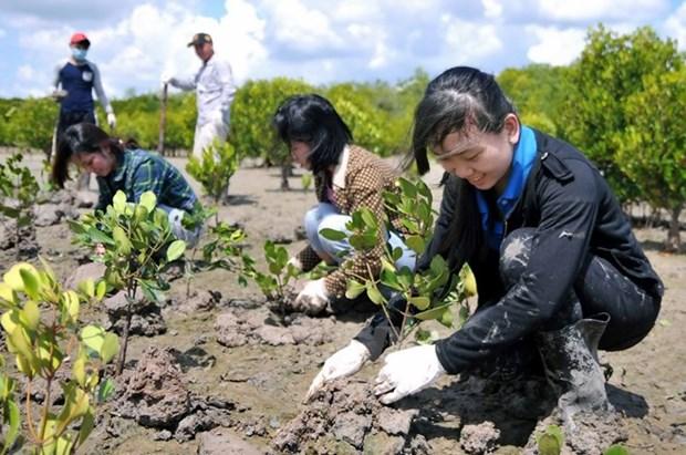 Le Vietnam partage ses experiences sur la recherche et le sauvetage hinh anh 2