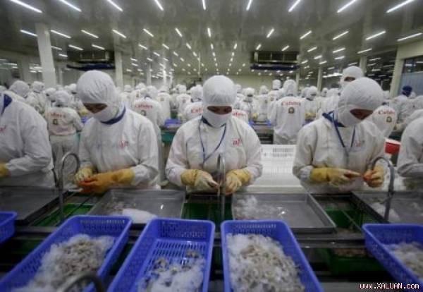 La Russie est un grand marche potentiel pour les entreprises au Vietnam hinh anh 1