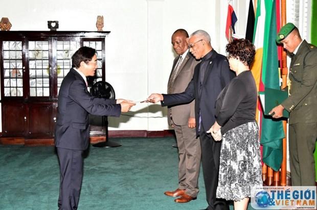 Le Vietnam souhaite intensifier ses relations avec le Guyana hinh anh 1