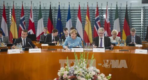 Des Vietnamiens en Europe demandent d'introduire la question de la mer Orientale au Sommet G20 hinh anh 1