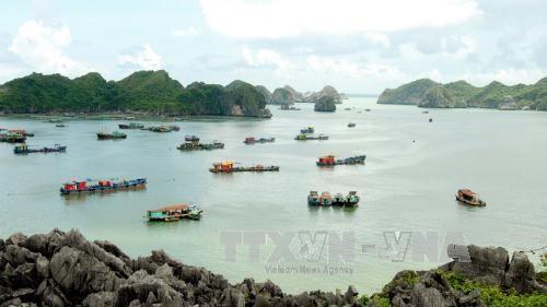 Hai Phong accueille trois millions de touristes au premier semestre hinh anh 1