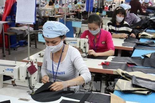 Les entreprises vietnamiennes invitees a intensifier les exportations vers l'UE hinh anh 1