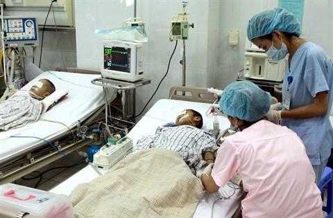 Alerte : importante epidemie d'encephalite japonaise au Vietnam hinh anh 1