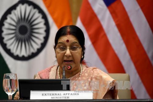 Le Vietnam au 9e Dialogue de Delhi, en Inde hinh anh 1