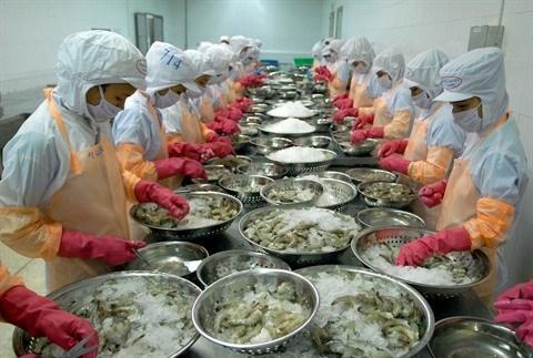 Des chaines de production de crevettes sures au service des exportations hinh anh 2