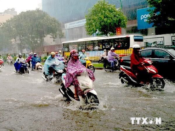 Des pluies torrentielles causent de lourds degats dans la region montagneuse du Nord hinh anh 1
