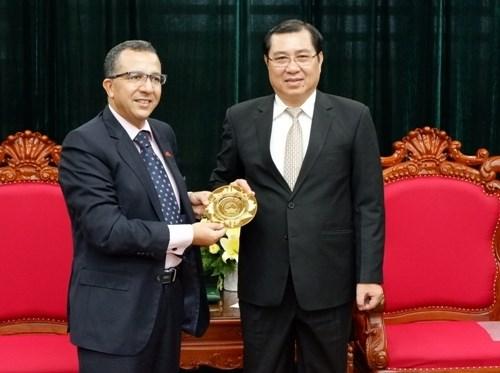 Da Nang renforce sa cooperation avec le Maroc hinh anh 1