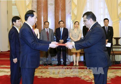 Promouvoir les relations Vietnam-Espagne et Vietnam-Yemen hinh anh 2