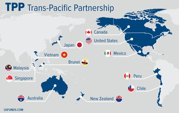 Les 11 pays restants discutent d'un TPP post-Etats-Unis hinh anh 1
