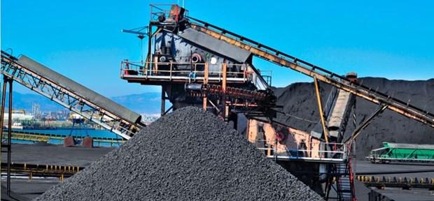 Nouveau record des exportations de charbon hinh anh 1