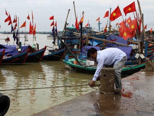 Les localites se preparent a l'arrivee de la tempete Talas hinh anh 1