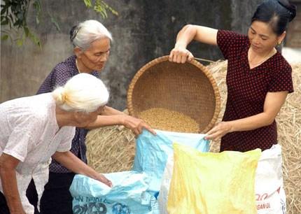 Seminaire sur le vieillissement de la population a Hanoi hinh anh 1