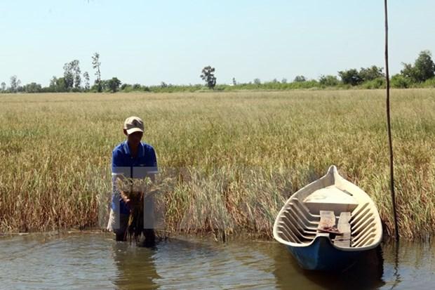 Un projet de resilience au changement climatique qui beneficie a huit localites hinh anh 1