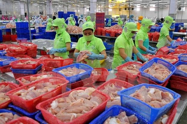 Forte hausse des exportations de produits agricoles et aquatiques aux Pays-Bas hinh anh 1