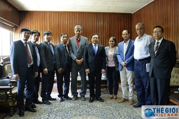 L'Association des agriculteurs vietnamiens en visite de travail en Egypte hinh anh 1