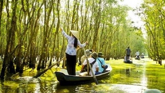 Parc national de Tram Chim, un site touristique celebre de Dong Thap hinh anh 1