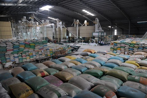 Les exportations ont le vent en poupe hinh anh 1