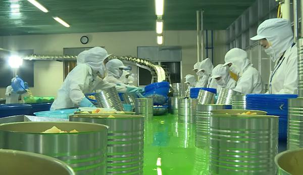 Alimentaire: un nouveau projet du groupe sud-coreen mis en chantier a Ho Chi Minh-Ville hinh anh 1