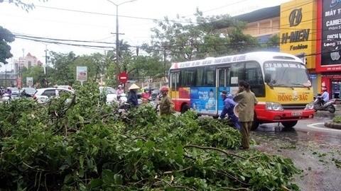Une saison des typhons 2017 capricieuse hinh anh 1