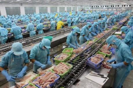Produits aquatiques : 4,3 milliards de dollars d'exportations depuis janvier hinh anh 1