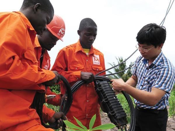 Le Mozambique est un partenaire important du Vietnam en Afrique hinh anh 1