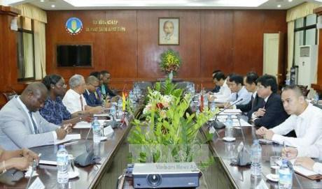 Vietnam et Mozambique discutent de la promotion des relations dans l'agriculture hinh anh 1