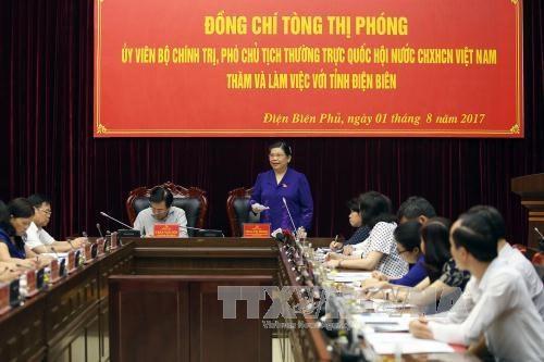 La vice-presiente de l'AN Tong Thi Phong en deplacement a Dien Bien hinh anh 1