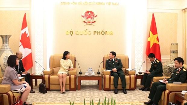 Le ministre de la Defense Ngo Xuan Lich recoit des ambassadeurs etrangers hinh anh 1