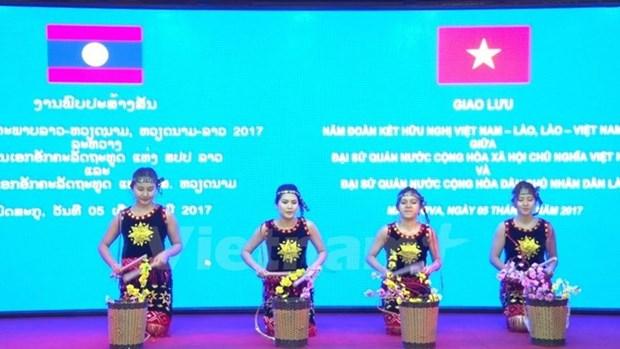 Un spectacle pour marquer les relations diplomatiques Vietnam-Laos hinh anh 1