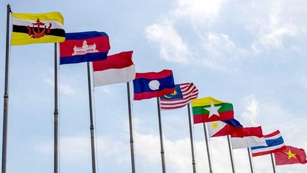 Celebration de l'anniversaire de l'ASEAN dans differents pays hinh anh 1