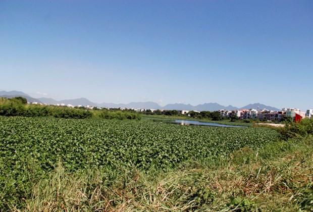 Achevement de la decontamination de l'aeroport de Da Nang (deuxieme phase) hinh anh 1