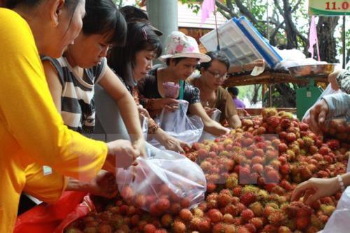 Forum Vietnam-Chine sur les fruits et legumes a Lang Son hinh anh 1