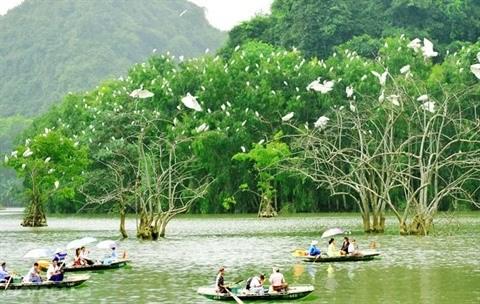 Le tourisme, point fort de l'economie de Ninh Binh hinh anh 1
